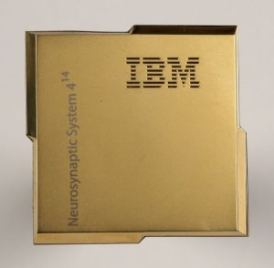 IBM True North
